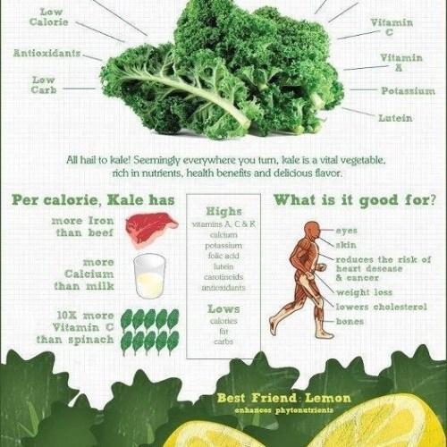 kale-nutrition-facts
