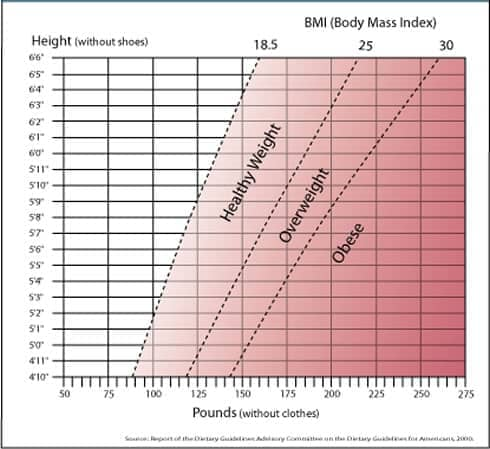 The Body Mass Index and Your Health - weight bmi