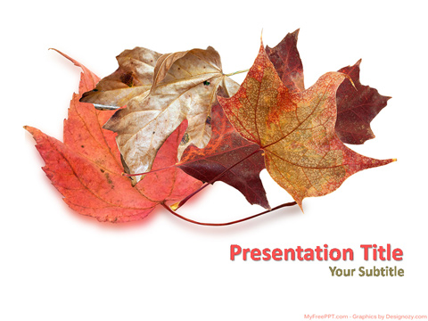 Free Autumn Season Leaves PowerPoint Template - Download Free