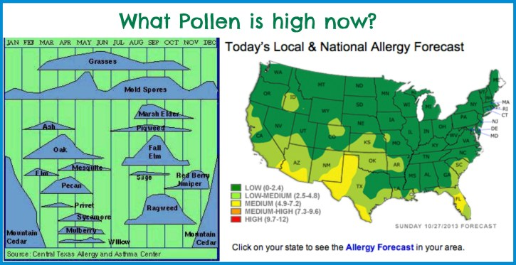 Do Your Allergies Cross