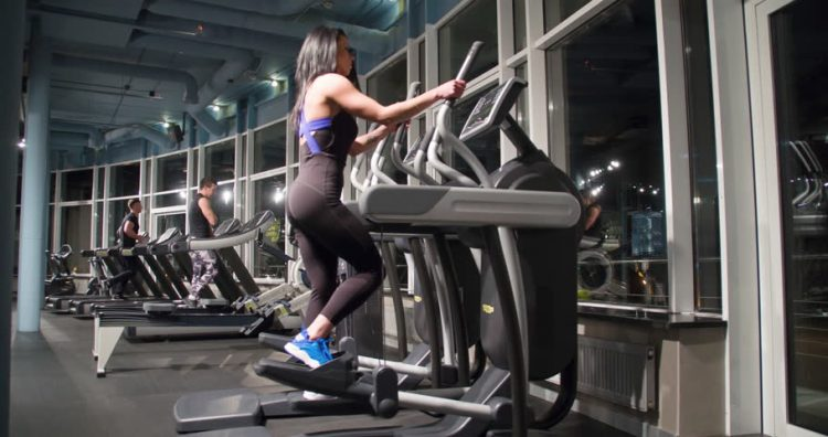 Gym Workouts and Weight Loss Fitness My Gym - gym workout for weight loss