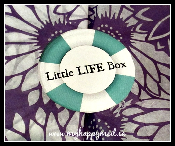 Little Life Box Canadian Subscription Box Review