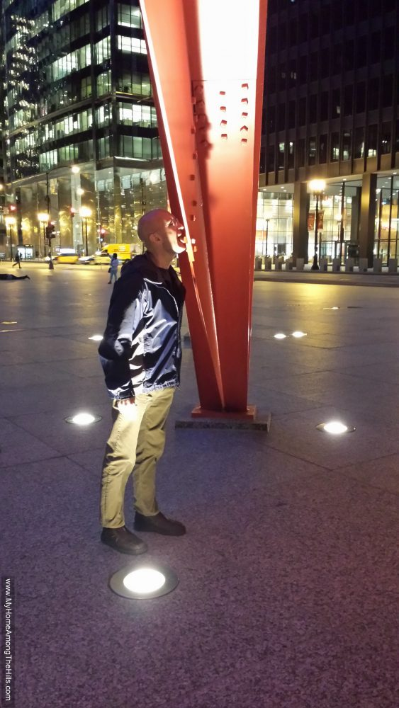 Licking the Flamingo in Chicago