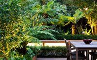 Tropical garden designs | modern exotic outdoor space London