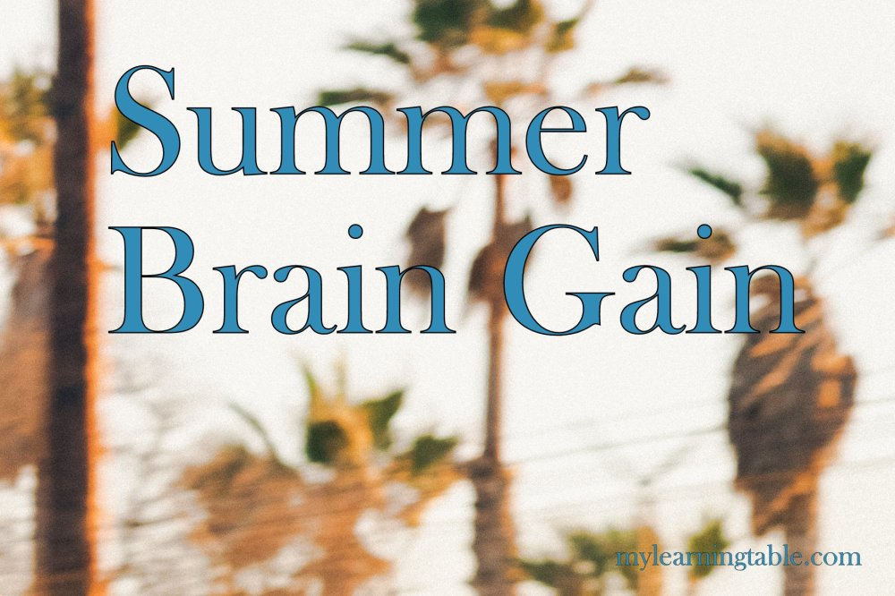 "Many parents and educators worry about losing the learning momentum during summertime, whether it's due to a less structured schedule, or weather that just doesn't scream ""library time."" But this challenge can be an opportunity with the right tools. Here is a round up of fun and games for summer brain gain!"