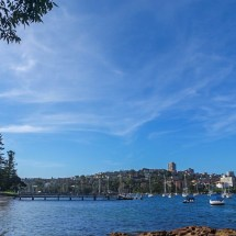 Manly Scenic Walk footbridge