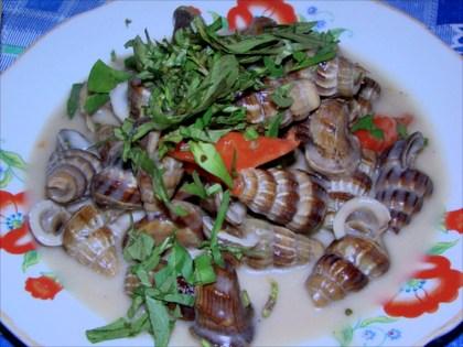 Mud snails in coconut milk