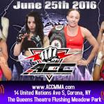 Aggressive Combat Championships 15