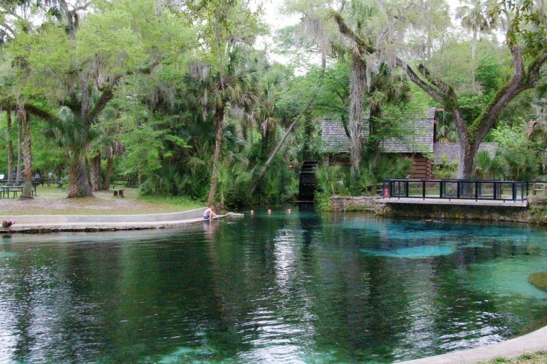 juniper springs, Marion county, Ocala Natural Springs Vacation ideas