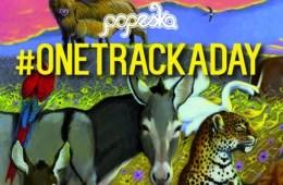 popeska one track a day