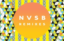 Bassnectar-NVSB-Remixes-crop1