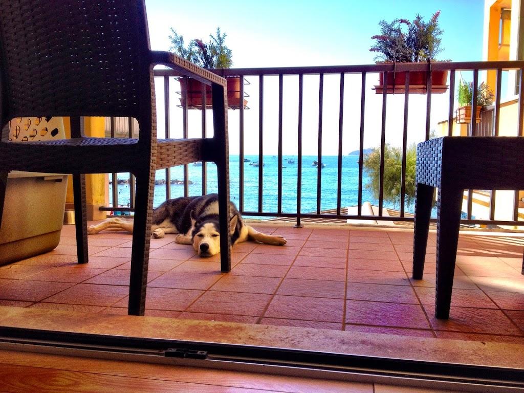 Cinque Terre, Part 2: Vernazza & Manarola