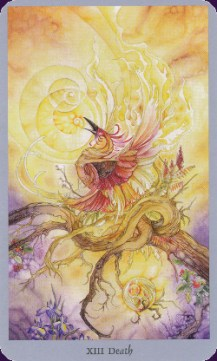 shadowscapes-10586