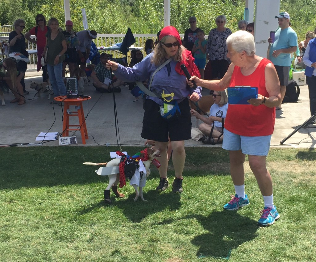 Nico the dog wore a pirate costume that included boots, an earring and a parrot!