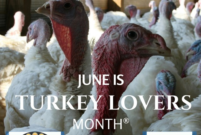 June is Turkey Lovers Month | via MyOtherMoreExcitingSelf.com #tryturkey #serveturkey #switchtoturkey