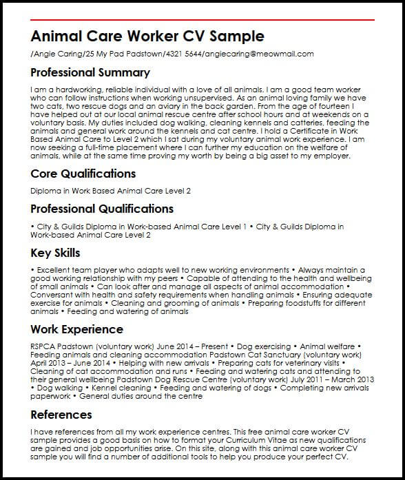 cv personal statement examples kitchen assistant