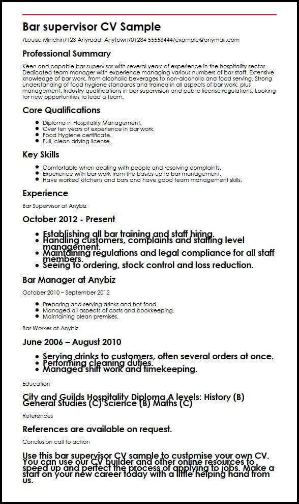 cv profile summary examples