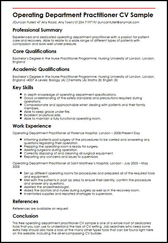 professional summary cv template