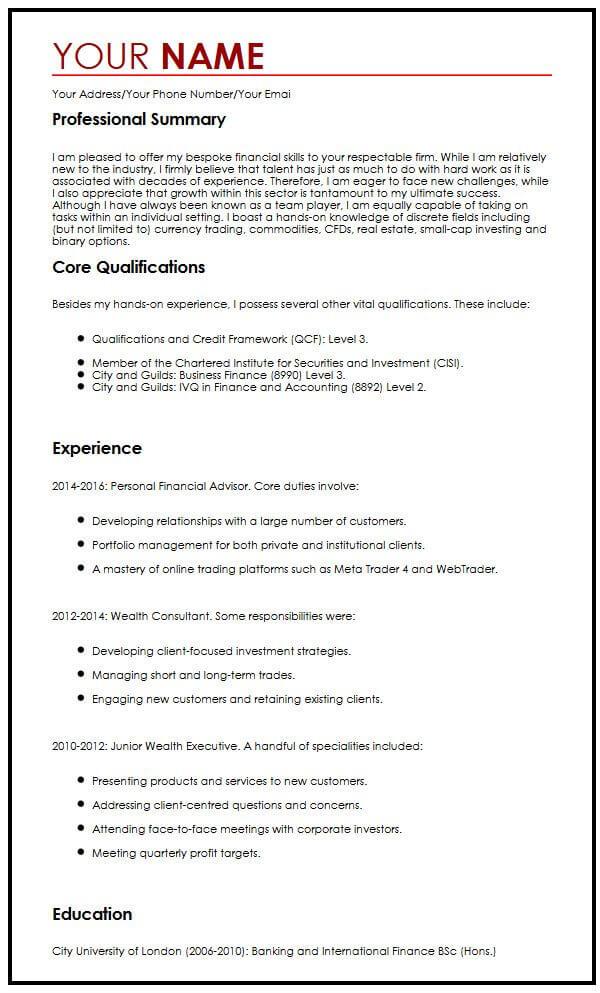 Professional CV Example MyperfectCV