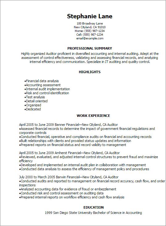 resume auditor qualifications