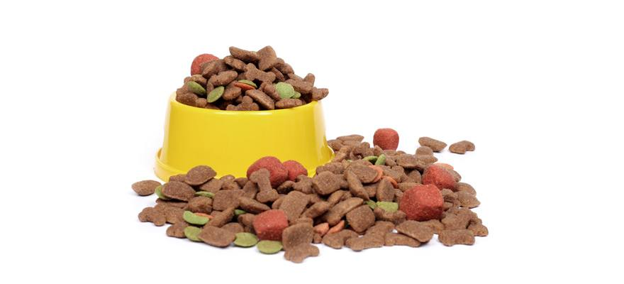 10 Best Grain Free Dog Foods (Pet Owner Guide) 2019