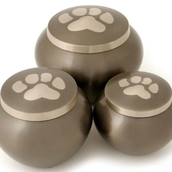Dog Urns: Odyssey Slate with 1 paw print