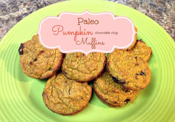 Paleo Pumpkin Chocolate Chip Muffins - My Pretty Brown