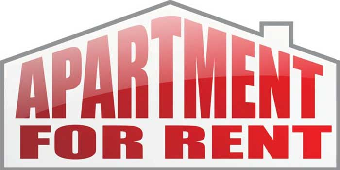 Do You Know How to Check Your Rental History Online?
