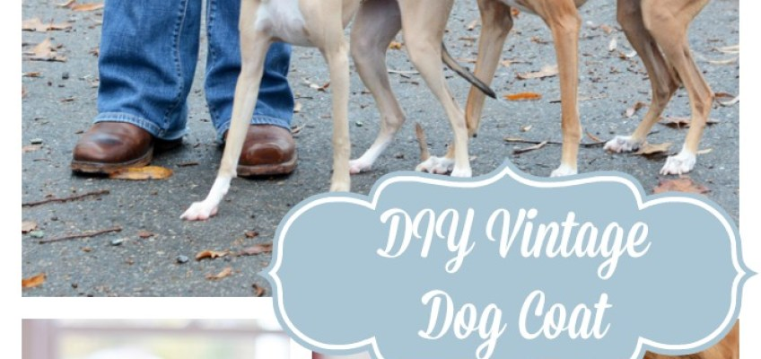 Kitschmas Gifts- DIY Vintage Wool Dog Coat