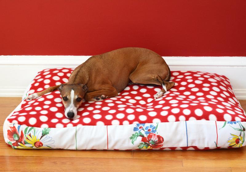 Diy Dog Bed Sweater Crafty