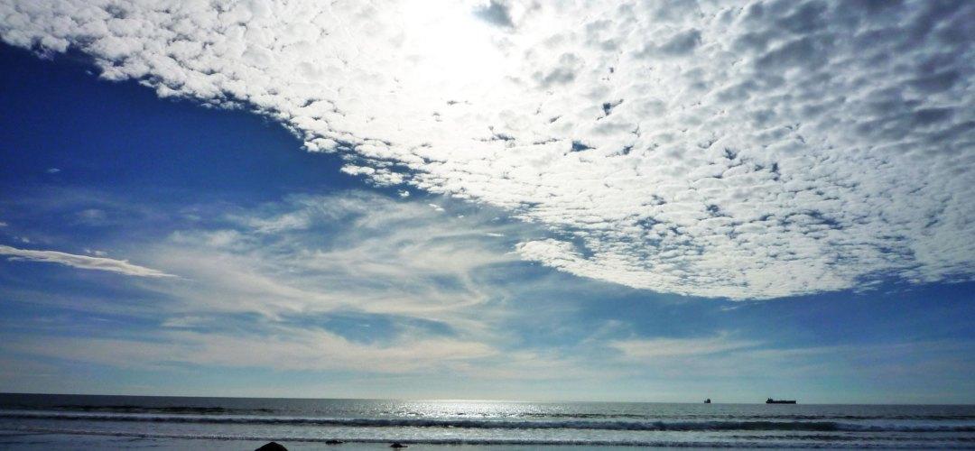 Oakura-Beach New Zealand
