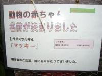 20080205-200801230917_1.JPG