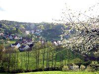 Newsletter Nr. 23: Sittenbachtal im Frühling – Sofa 15%Aktion und Radiologisches