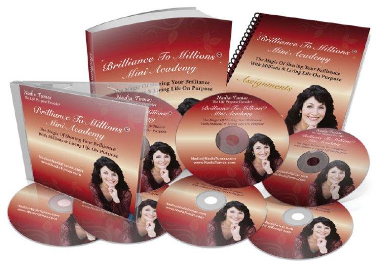 Brilliance to Millions Mini Academy