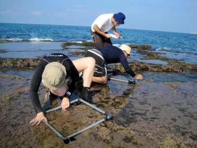 Med coastal ecology study
