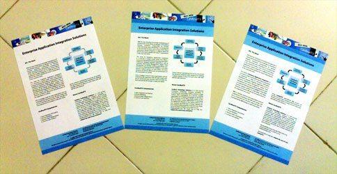 leafletsOne1.jpg