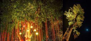 Gaurav-Lavanya-Taj-Wedding-Photographer-Knottytales-Naina-24.jpg