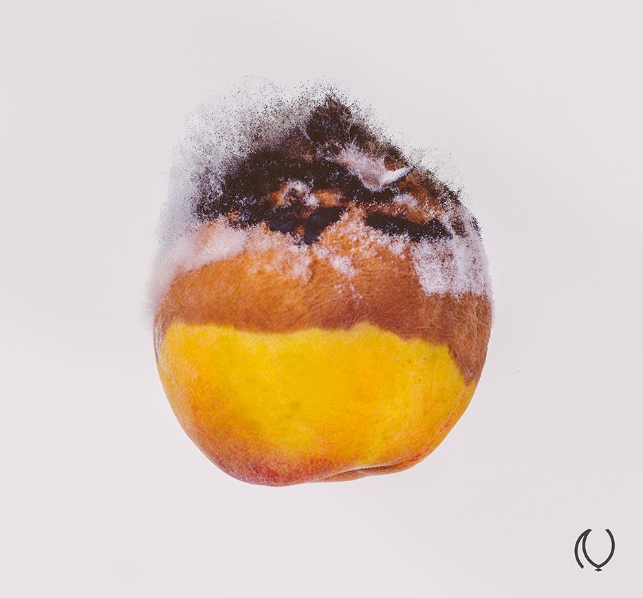 Rotten-Fruit-Portrait-Fine-Art-Luxury-Lifestyle-Photographer-Naina.co-Raconteuse