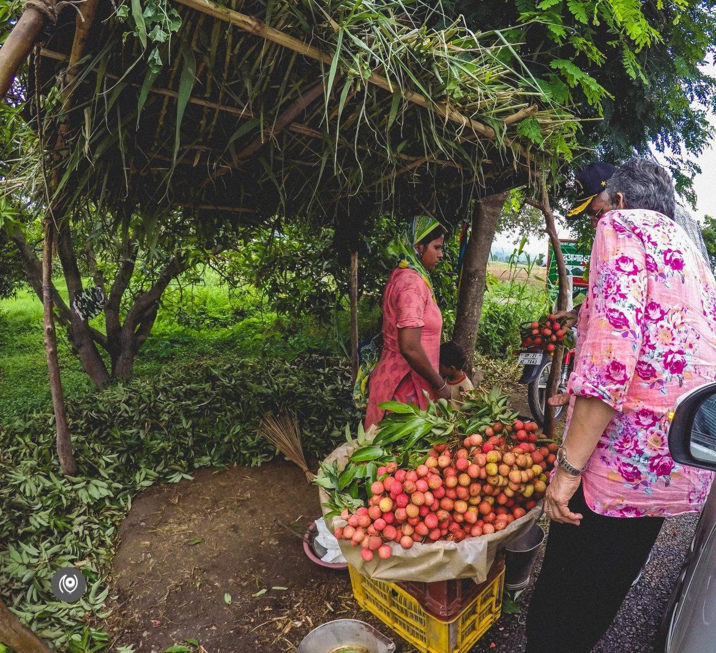 Naina.co, #NAINAxRanikhet, Ranikhet, Uttarakhand, Travel Photographer, Travel Blogger, Luxury Photographer, Luxury Blogger, Lifestyle Photographer, Lifestyle Blogger, Naina Redhu, #EyesForDestinations, #EyesForIndia, Destination Blogger, Destination Photographer