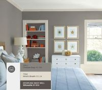 6 Great Gray Paint Colors To Use In Your Home - Nicole ...