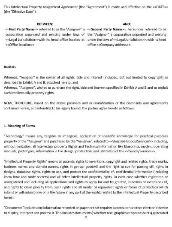 NE0201 Intellectual Property Assignment Agreement Template \u2013 English