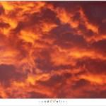 Cloudscape (1D120523)