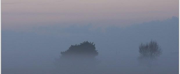Hidden landscape (1D132377)