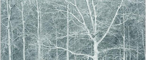 Voortjagende sneeuw