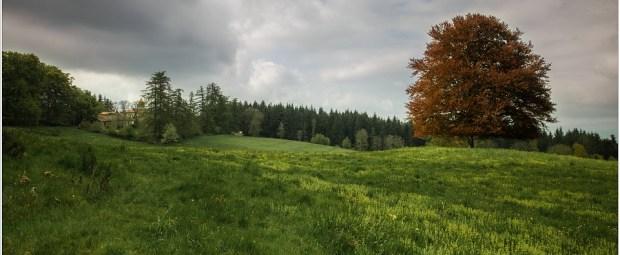 Het landgoed van chateau Folgoux, waar Chambres d'hotes La Fougeraie is.