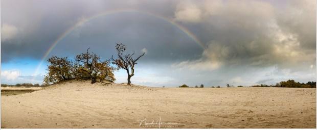 Regenboog boven de Loonse en Drunense Duinen