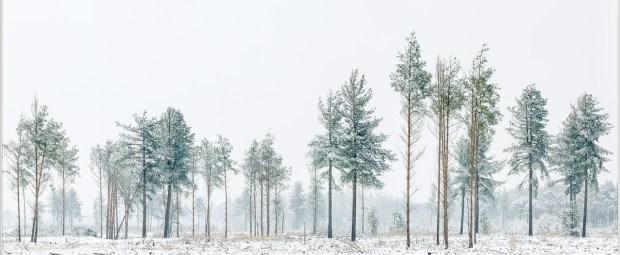 Restanten van Strabrecht in de sneeuw