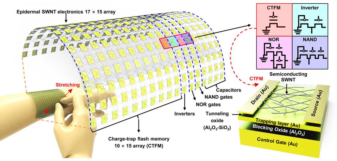 Wearing single-walled carbon nanotube electronics on your skin