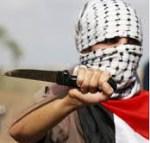 Knife Terror