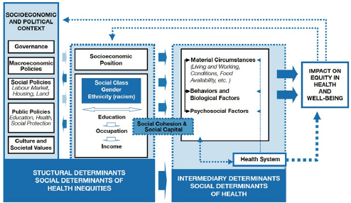 3 Frameworks for Addressing the Social Determinants of Health A